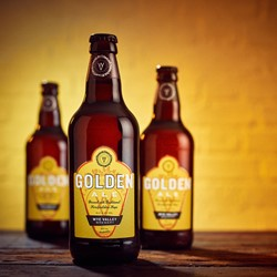 Image of 8x500ml Golden Ale